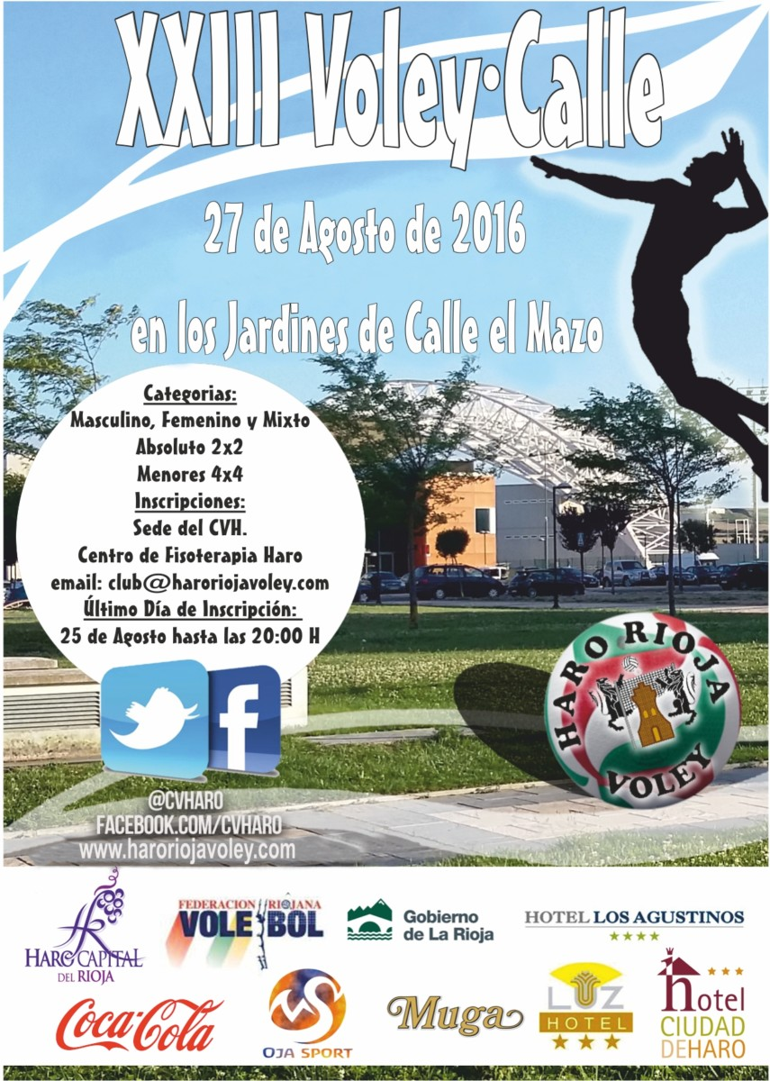 Cartel voley calle 2016